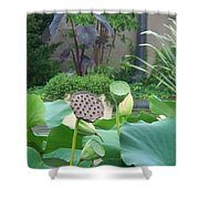 Lotus Flower In Lily Pond Shower Curtain