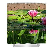 Lotus Flower Reflections Shower Curtain