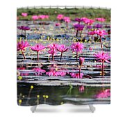 Lotus Flowers Shower Curtain