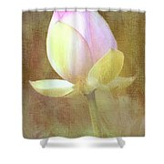 Lotus Looking To Bloom Shower Curtain