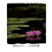 Lotus Reflections Shower Curtain