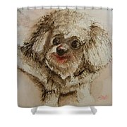 Louie Shower Curtain