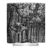 Louisiana Bayou - Bw Shower Curtain