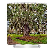 Louisiana Country Shower Curtain