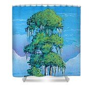 Louisiana Cypress Shower Curtain