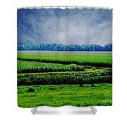 Louisiana Greenway Shower Curtain