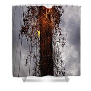 Louisiana Light Post Shower Curtain