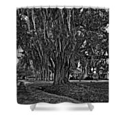 Louisiana Moon Rising Monochrome  Shower Curtain