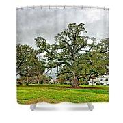 Louisiana Winter 2 Shower Curtain