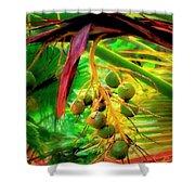 Loulu Palm Shower Curtain