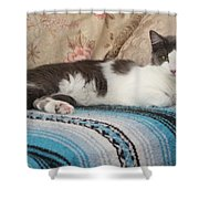 Lounging Cat Shower Curtain