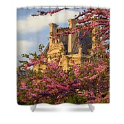 Louvre Blossoms Shower Curtain