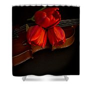 Love And Romance Shower Curtain by Edward Fielding