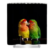 Love Birds At First Sight Shower Curtain