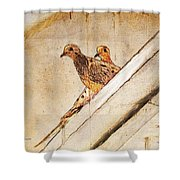 Love Birds On My Balcony Shower Curtain