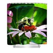Love Bug Shower Curtain