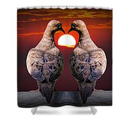 Love Dove Birds At Sunset Shower Curtain