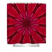 Love In An Orchid Kaleidoscope Shower Curtain