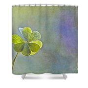 Love In Love With Love Shower Curtain