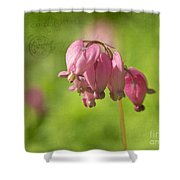 Love Letters 2 Shower Curtain