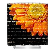Love Letters Shower Curtain by Edward Fielding