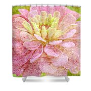 Love Letters Shower Curtain