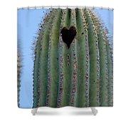 Love Shack Saguaro With A Heart Shower Curtain