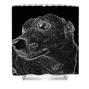 Love The Concern Pet Dog Rendering Shower Curtain