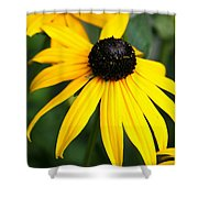 Loveliness Shower Curtain