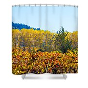 Lovely Fall Colors Shower Curtain