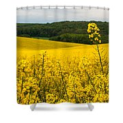 Lovely Hills Shower Curtain by Davorin Mance