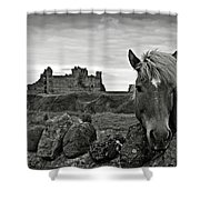 Lovely Horse And Tantallon Castle Shower Curtain