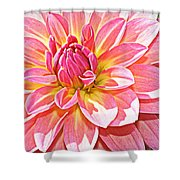 Lovely In Pink - Dahlia Shower Curtain
