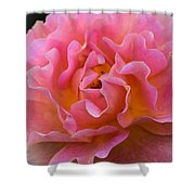 Lovely In Pink Shower Curtain