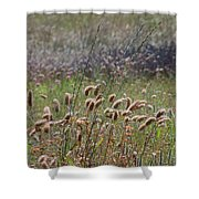 Lovely Layers Of Grass Shower Curtain