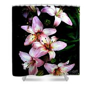 Lovely Lilies Shower Curtain