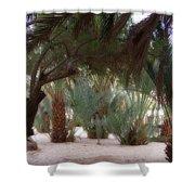 Lovely Oase Desert Camp Sinai Egypt Shower Curtain