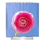 Lovely Pink Flower Series 3 Or 5 Shower Curtain