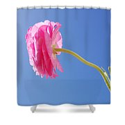 Lovely Pink Flower Series 4 Or 5 Shower Curtain