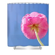 Lovely Pink Flower Series 5 Or 5 Shower Curtain