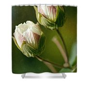 Lovely Twins Shower Curtain