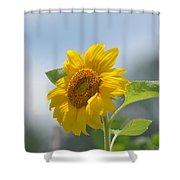 Lovely Yellow Sunflower Shower Curtain