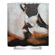 Lovers - Kiss6 Shower Curtain