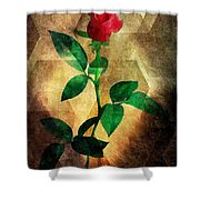 Love's Enchantment Shower Curtain
