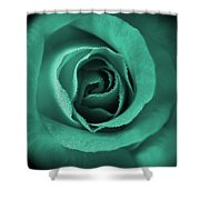 Love's Eternal Teal Green Rose Shower Curtain