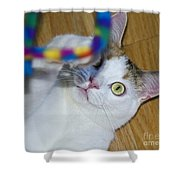 Loving The Rainbow Psychedelic Toy.. Shower Curtain