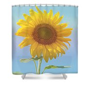 Loving The Sun Shower Curtain