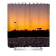Low Flyby Shower Curtain