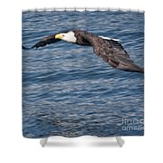 Low Flying Shower Curtain