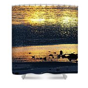 Low Tide Gold Shower Curtain